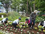 t2012-鷺沼と花と緑を育てよう