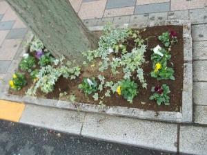 田調花植え歩道花壇