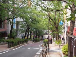 通りの風景②