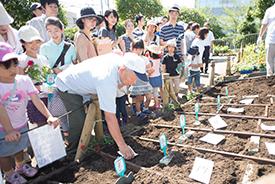 :いよいよ花植えスタート!手前が地域の親子用の花壇。その奥の一画が園児用の花壇です