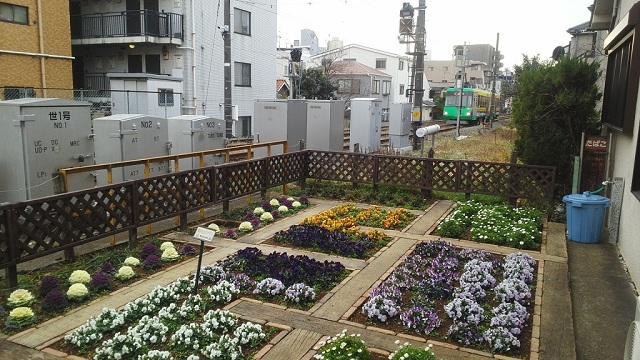 世田谷駅前花壇2