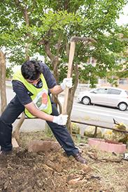 土を掘り起こす作業が重労働!