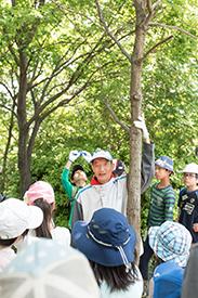 子どもの背丈より小さかった木がこんなに大きく!