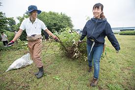 雑草や枝を運び…