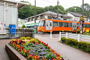 宮の坂駅の駅前花壇